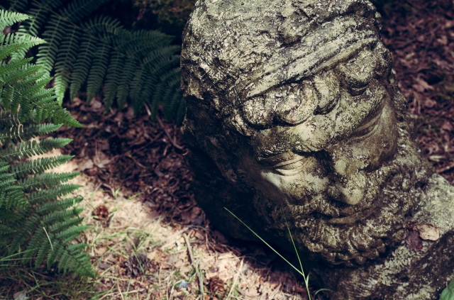 A sculpted head on the forest floor